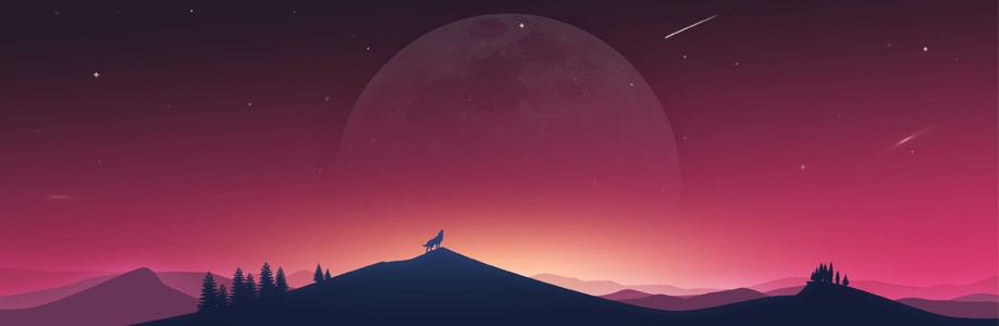 Sunxuemei Cover Image